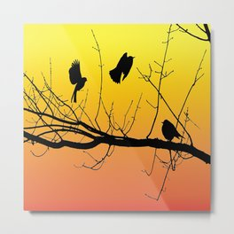 Sunset Birds Infight Metal Print