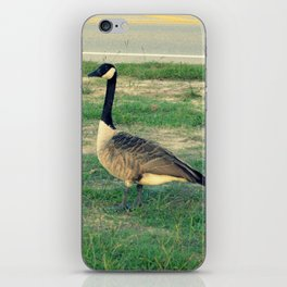 Goose Crossing iPhone Skin