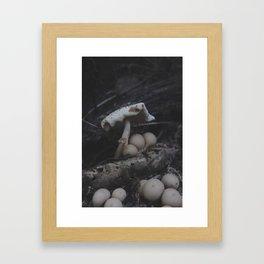 The Mushroom King Framed Art Print