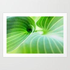 Leaves Landscape Art Print