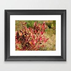 Plants on the powerlines Framed Art Print