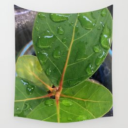 Raindrops on Baby Sea Grape Leaves Wall Tapestry