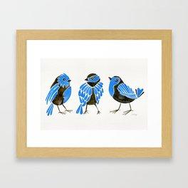 Blue Finches Framed Art Print