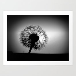 Eye see a Dandelion Clock Art Print