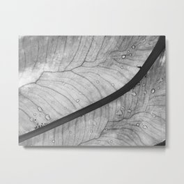 Teardrops and Waterways Metal Print