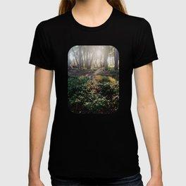 Empire Gulch Morning T-shirt