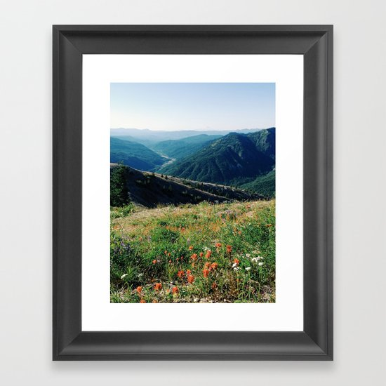Gifford Pinchot National Forest Framed Art Print