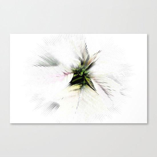 Poinsettia White on White Canvas Print