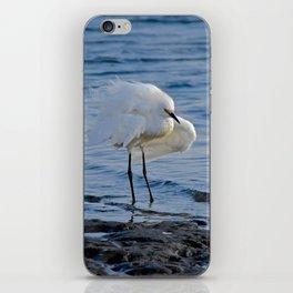 windy iPhone Skin