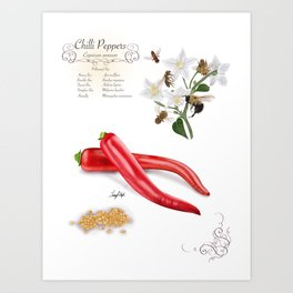 Chilli Peppers and Pollinators Art Print