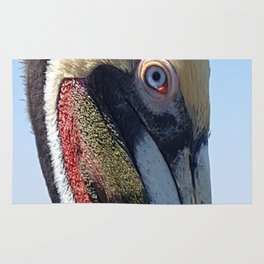 Fort Lauderdale Pier Pelican Rug