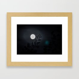 Beneath the full moon Framed Art Print