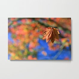 Falling With Style Metal Print