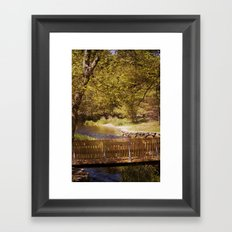 Footbridge Framed Art Print