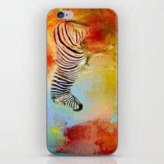 Colorful Expressions Zebra iPhone & iPod Skin