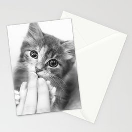 Kitten Kisses Stationery Cards