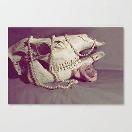 Stanly Telstar Canvas Print