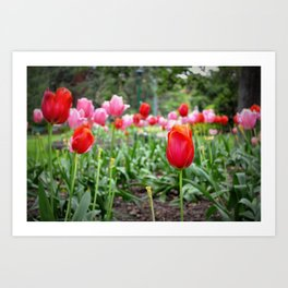 Spring in the city Art Print