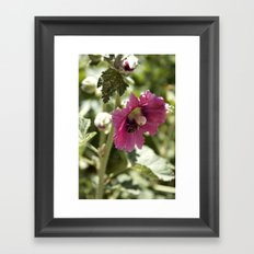 Buzzing here and there Framed Art Print