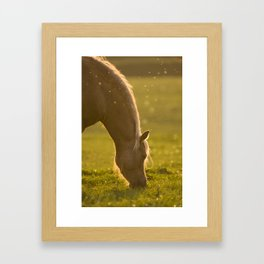 Golden specs of light Framed Art Print