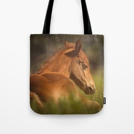 Cute Foal Laying Down Tote Bag
