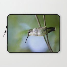 Female Hummingbird Laptop Sleeve