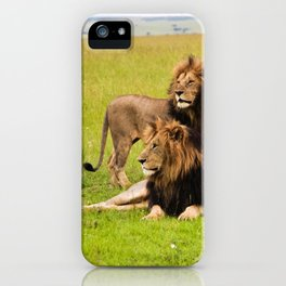 Brothers of the Jungle - Lions iPhone Case