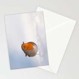 The Red White and Blue (Robin in the snow) Stationery Cards