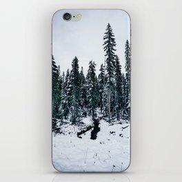 Dusting of Snow iPhone Skin