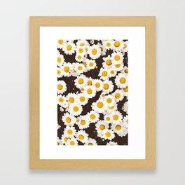 Daisy Daisies Framed Art Print