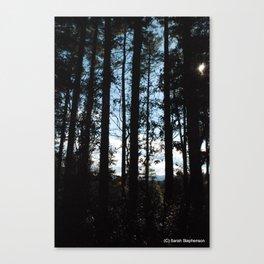Guiding light Canvas Print