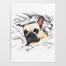French Bulldog - F.I.P. - Miuda Frenchie Poster