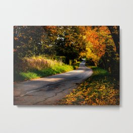 Autumn Dreams. Metal Print