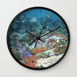 Reef with a redbanded grouper and a school of sergeant fish Wall Clock