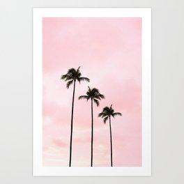 Palm Tree Photography Peach | Blush Pink | Millennial Pink | Miami Art Print