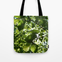 Sunlight Canopy Tote Bag