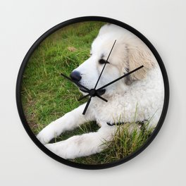 Just Chillin' - Great Pyrenees Puppy Wall Clock