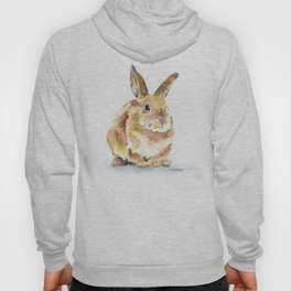 Bunny Rabbit Watercolor Painting - Woodland Animal Art Hoody