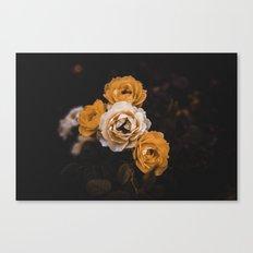 Orange petals. Canvas Print