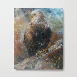 Bald Eagle on Birch Metal Print