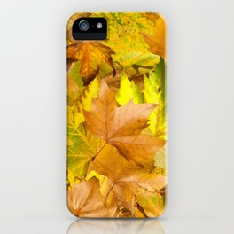 Autumn leaves. Pile of leaves iPhone Case