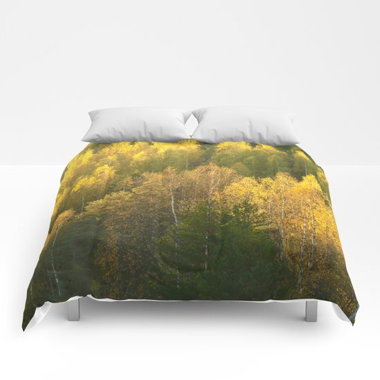Forest In Sunset Tones  Comforters