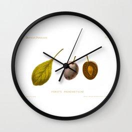 Furst's Fruhzwetsche (Plum) Illustration Wall Clock