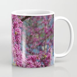 Blue skies and redbud in spring Coffee Mug