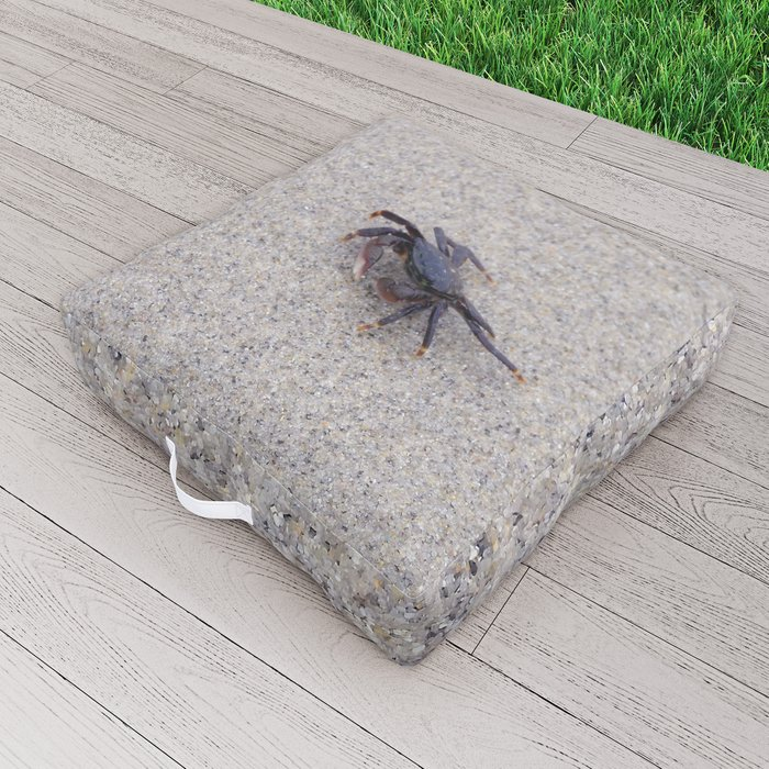 Don't Mess With Me Outdoor Floor Cushion