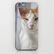 Wink Slim Case iPhone 6s