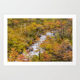 Colored Forest Landscape, Patagonia - Argentina Art Print