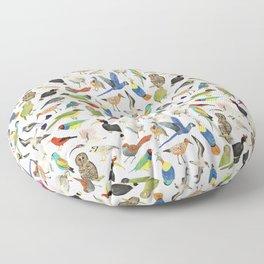 Endangered Birds Around the World Floor Pillow