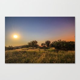South African Moonlight Canvas Print