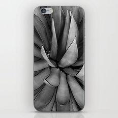 Black & White Agave iPhone & iPod Skin